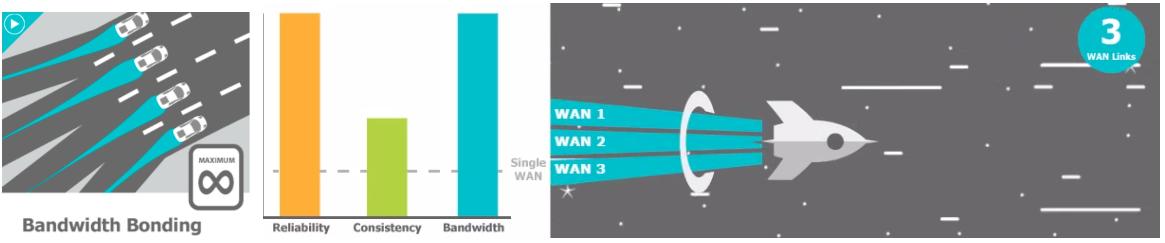 peplink bandwidth bonding